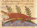 صورة التمساح من كتاب الحيوانللجاحظ