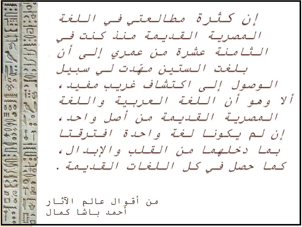 أحمد كمال باشا.png