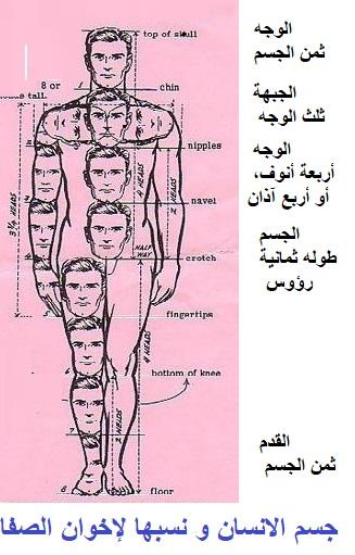 جسم الانسان و نسبها لإخوان الصفا