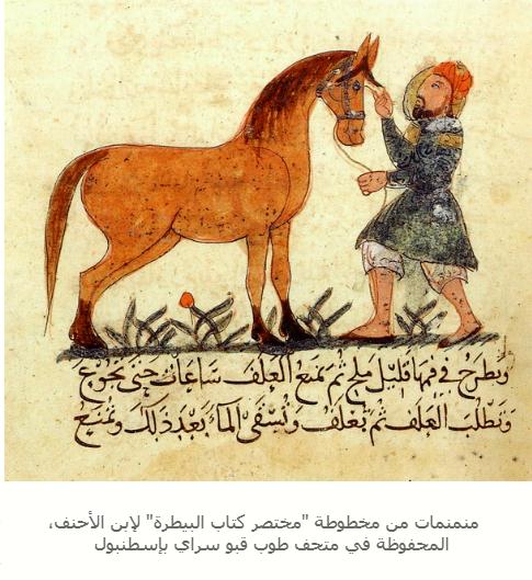 2019-01-10 10_24_07-من مخطوطات الخيل العربية