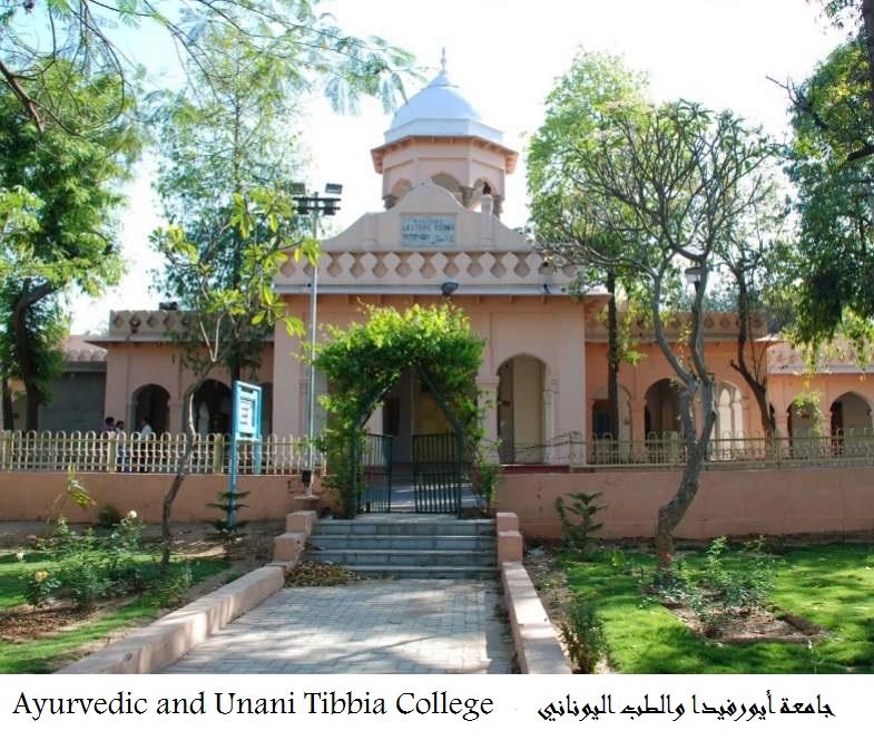 ayurvedic-and-unani-tibbia-college-board-karol-bagh-delhi-hospitals-yru99.jpg