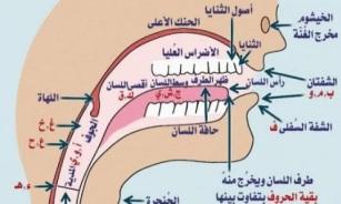 مدرج صوتي للغة العربية