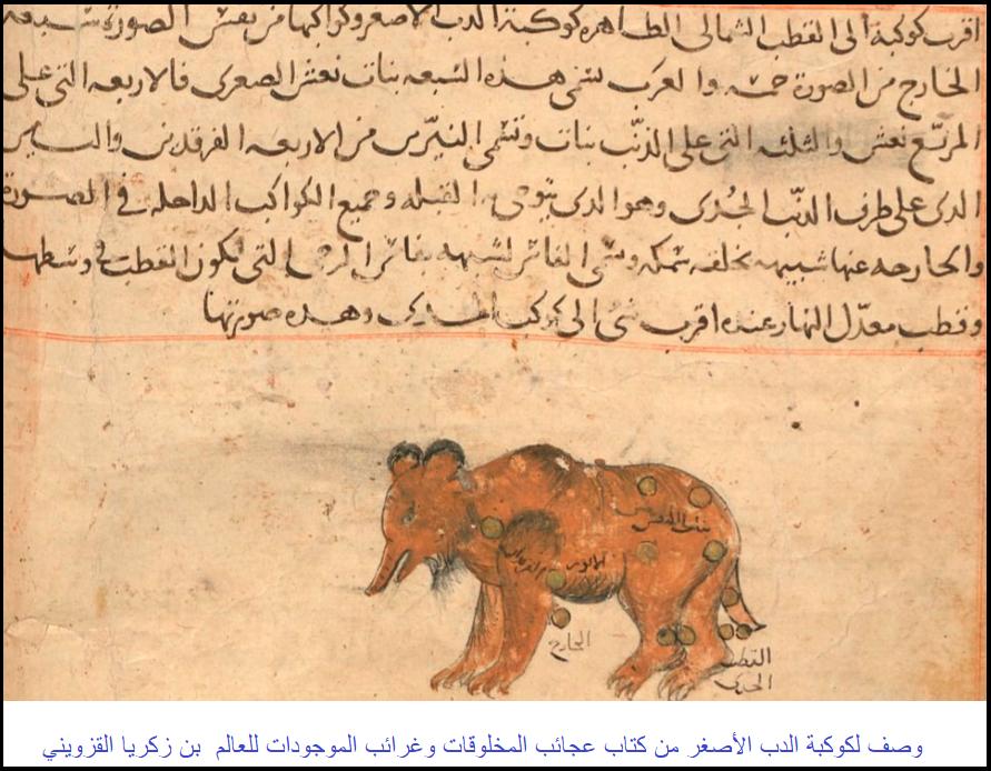 وصف لكوكبة الدب الأصغر من كتاب عجائب المخلوقات وغرائب
